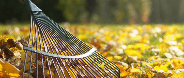 leaf removal services are available at atlas lawn care lafayette indiana