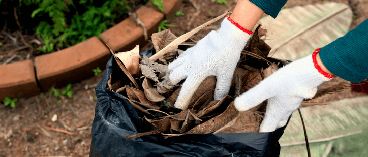 spring & fall yard clean-up services by atlas lawn care lafayette indiana